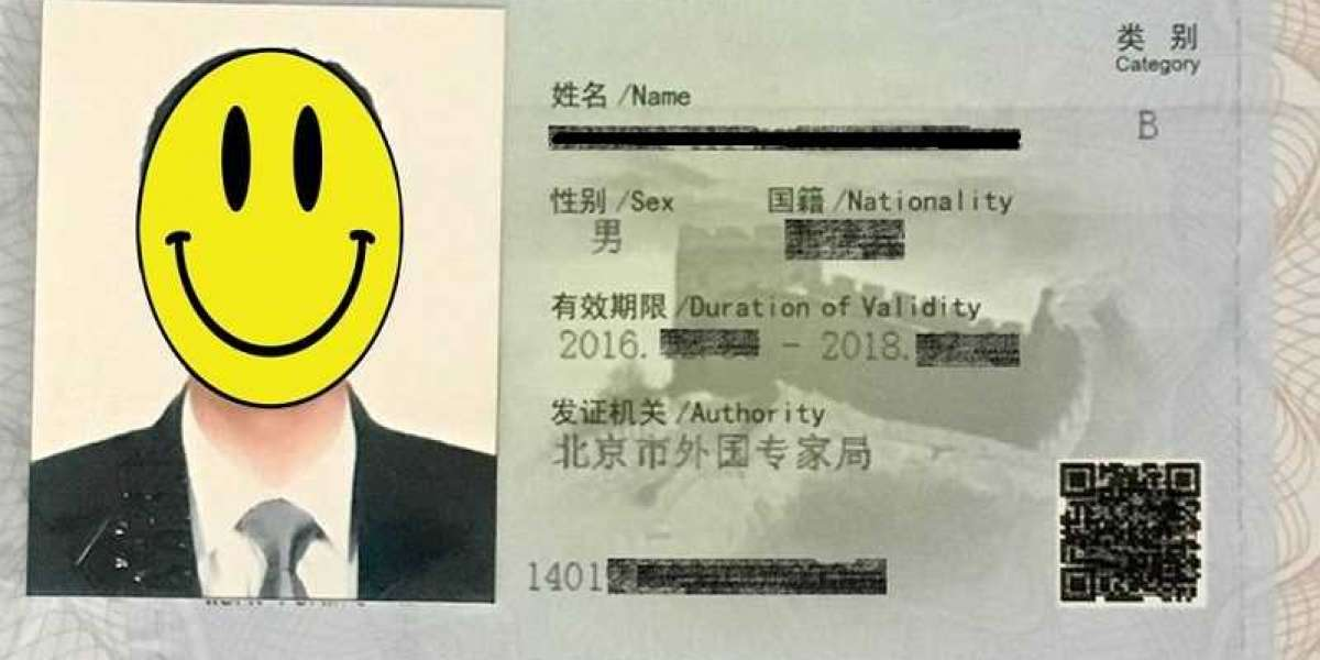 How to Check Your Work Permit Classification and Visa Application Status via WeChat