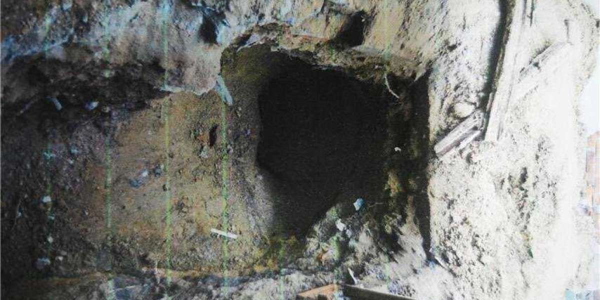 Five jailed for raiding ancient tomb in Beijing
